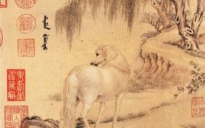 Picture letter, horse, Wang Zhicheng
