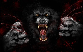 Picture blood, teeth, mouth, fangs, Werewolf, thing, creepy