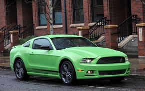 Picture rain, street, green, Ford Mustang GT, salad