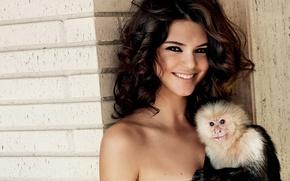Picture model, monkey, model, Kendall Jenner, Kendall Jenner, Kardashian, Kardashian