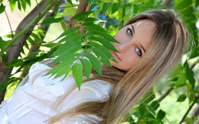 Picture look, light, branches, face, Girl, Elise A
