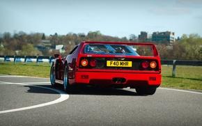 Picture Red, Auto, Road, Machine, Ferrari, Turn, Ferrari, F40, Supercar, Supercar, Ferrari F40, F 40, Back, …