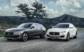 Wallpaper Levante, crossover, Maserati, Levante, Maserati