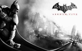 Picture the city, hero, bat, Batman Archam City