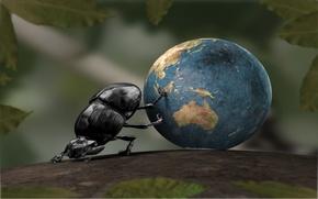 Wallpaper earth, SHUK beetle, Leaves, Ball
