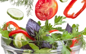 Picture greens, cucumber, dill, tomato, parsley, salad, paprika, pepper, cucumber, tomato, Greens, basil, parsley, Basil, lettuce, …