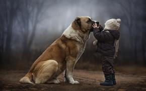 Picture dog, friendship, child