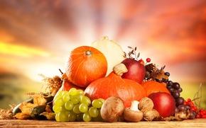 Picture mushrooms, Apple, grapes, pumpkin, fruit, nuts, vegetables, dry leaves