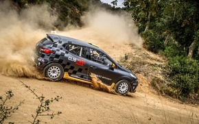 Picture trees, dust, skid, rally, rally, slip, renault, Reno, Clio, renault sport, clio, r3t