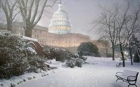 Picture winter, light, snow, Park, lighting, hill, lights, Washington, tree, USA, USA, Capitol, painting, bench, park, …