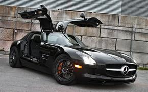 Picture black, black, front view, Mercedes benz, sls amg, gull-wing, doors, ogradjena, Mercedes Benz, Colusa wire