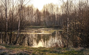 Picture nature, lake, spring
