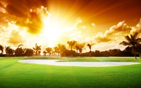 Picture the sky, grass, clouds, trees, landscape, sunset, nature, palm trees, beautiful, grass, sky, trees, landscape, …
