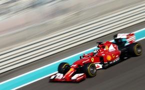 Picture Formula 1, Champion, Alonso, Fernando