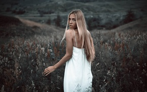 Picture girl, long hair, dress, young, beautiful, beauty, lady, face, hair, blond, white dress