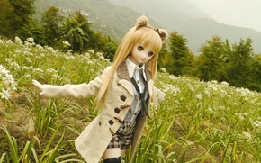 Picture field, nature, toy, doll