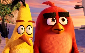 Picture cinema, animation, red, Red, game, black, beach, sea, yellow, eyes, smile, flowers, birds, cartoon, movie, ...