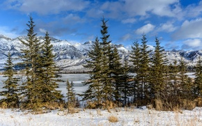 Picture snow, mountains, lake, ate, Canada, Albert, national Park, Jasper