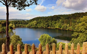 Picture forest, nature, lake, Germany, Germany, trees.