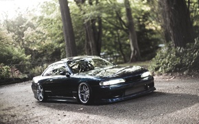 Picture forest, trees, Silvia, Nissan, Nissan, Tuning, Sylvia, S14, JDM