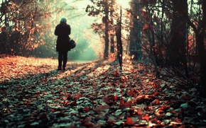 Picture girl, loneliness, the pile of leaves