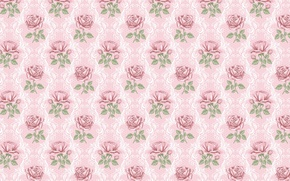 Picture flower, background, rose, texture