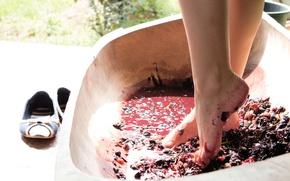 Picture girl, trough, Wine, legs, Grapes, Vanda Lust