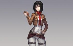Picture look, girl, bread, gesture, art, shingeki no kyojin, mikasa ackerman, ryuuzaki itsu