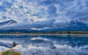 Picture forest, clouds, mountains, lake, reflection, blue