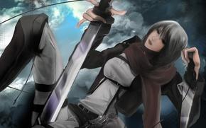 Picture girl, flight, scarf, soldiers, swords, art, patch, shingeki no kyojin, mikasa ackerman, fixtures