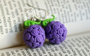 Picture text, earrings, book