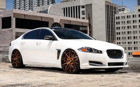 Picture Jaguar, wheels, with, Forgiato