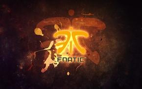 Wallpaper Team, cs go, Fnatic