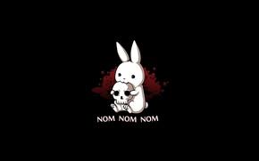 Picture skull, nom nom nom, hare