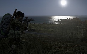 Picture View, Weapons, DayZ, Aiming