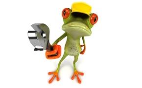 Picture graphics, frog, key, cap, repair, Free frog 3d