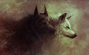 Picture animals, wolf, art, wolf