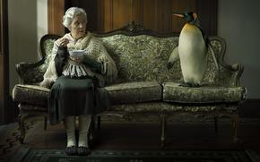 Picture sofa, grandma, penguin