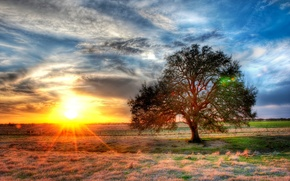 Picture sunset, USA, sunset, Texas, farm, texas, farm, ranch