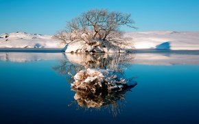 Wallpaper winter, the sky, water, lake, reflection, tree