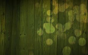 Picture glare, wall, tree, green, Board, texture
