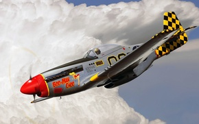Picture figure, Mustang, art, P-51, UNITED STATES AIR FORCE, North American