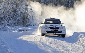 Picture Winter, Snow, Sport, Turn, Day, Car, WRC, Rally, Rally, Skoda, Fabia, Skoda