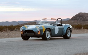 Picture retro, Ford, shelby cobra, 289 fia