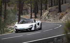 Picture road, car, auto, trees, trunks, McLaren, road, 570GT
