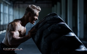 Wallpaper muscles, workout, crossfit, giant tire, explosive strength
