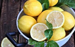 Picture yellow, lemon, citrus