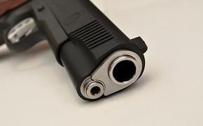 Picture pistol, handgun, Springfield Armory 1911