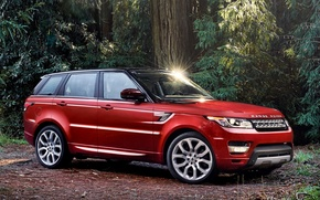Picture red, nature, in the woods, EVOH, range Rover