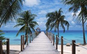 Wallpaper Beach, Polynesia, Tuamotu